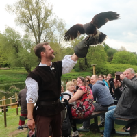 (AD) Our day out at Warwick Castle and the Falconer's Quest